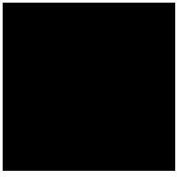 Runam logo